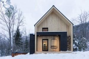Рис. 4. Энергоэффективные здания: скандинавский дом
